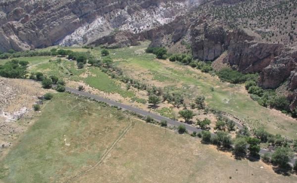 Conaway-20-Meadow-P1010045_c0f4c99da687cd00b14f09e081a69c2f
